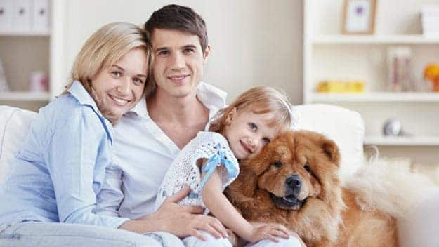 Wills & Trusts dog-young-family Direct Wills Sutton in Ashfield